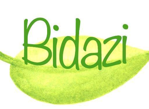 Bidazi_Logoa